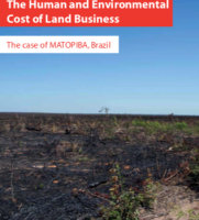 The Human and Environmental Cost of Land Business