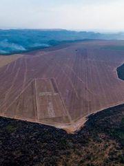 Harvard and TIAA's farmland grab in Brazil goes up in smoke