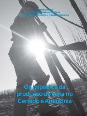 Os impactos da produção de cana no Cerrado e Amazônia